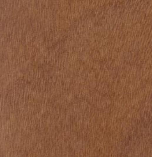 Modern Wood Veneer- CPR FA