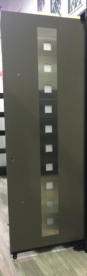 Modern Exterior Door with Stainless Steel Plate and 10 Door Lites